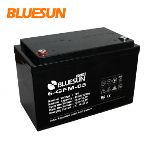 12V 65AH GEL best aa rechargeable battery charger-Bluesun